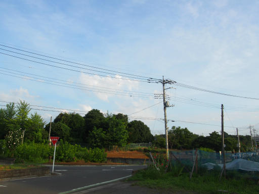 20180714・狭山ヶ丘散歩空06・いかにも夏の雲