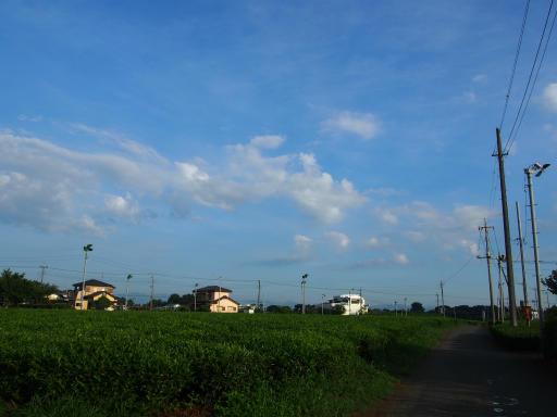 20180714・狭山ヶ丘散歩空09