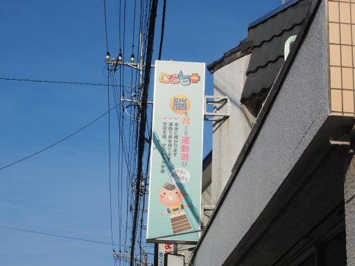20180714・狭山ヶ丘散歩ネオン19