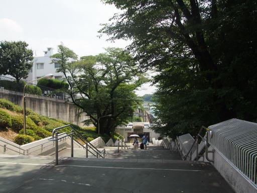 20180804・阿佐ヶ谷七夕1-12