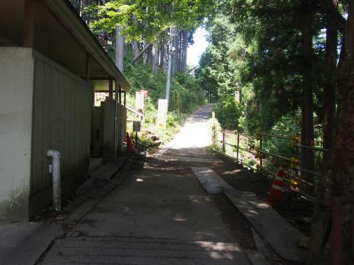 20180805・御岳山1-06