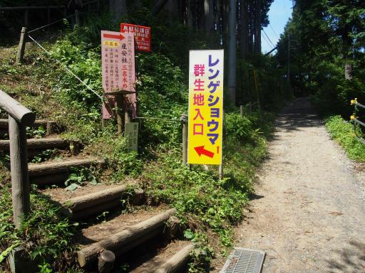 20180805・御岳山1-07