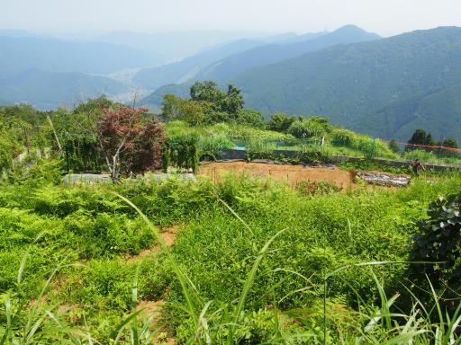 20180805・御岳山1-16