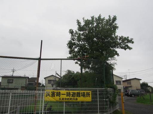 20180808・台風前の散歩空17・久米中町の空