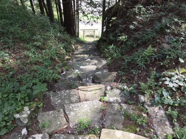 180722-土用三郎 (2)