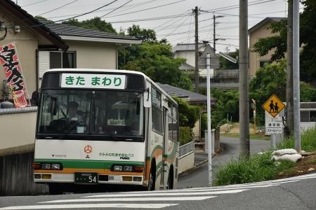 DSC_0197p.jpg