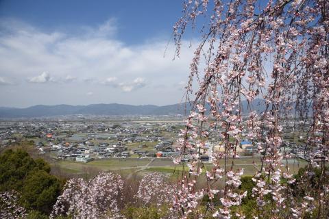 向麻山からの眺望