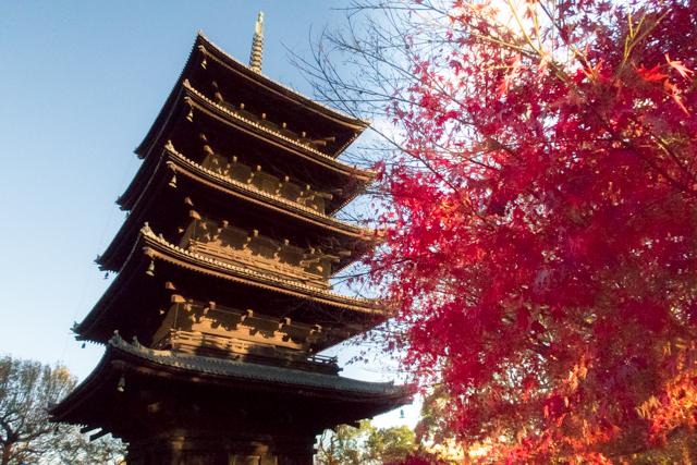 東寺(2)
