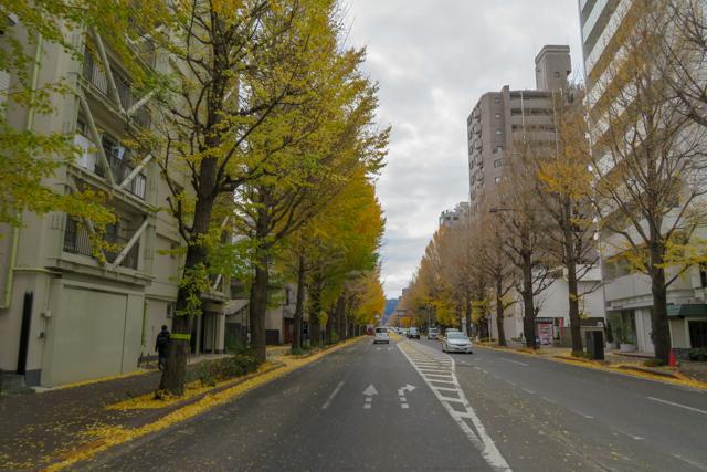 高尾山(3)