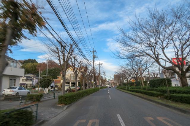 高尾山(29)
