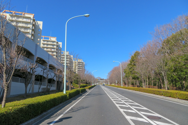 橋本(2)