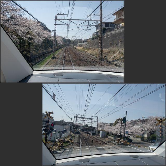 箱根周遊1(11)
