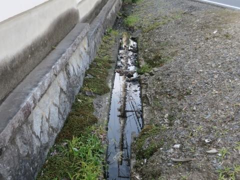 「子供や自転車がドブに落ちてしまう路肩」川又地区 (3)