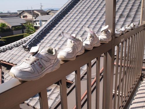 500洗った靴