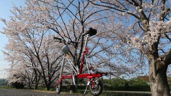 yoshimi_carryme