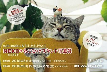 NEKO ねこひげスタンド写真展2018