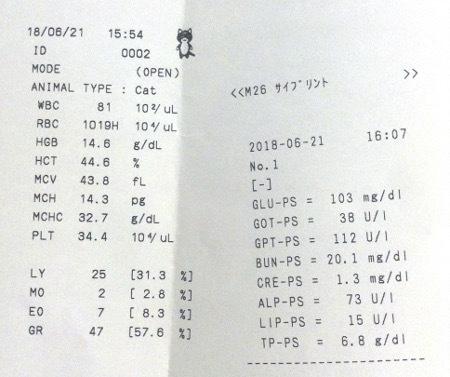 2081621血液検査