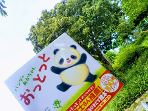 20180727ぱんだのあかちゃんおっとっと原画展1.jpg