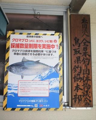 マグロ釣り自粛令