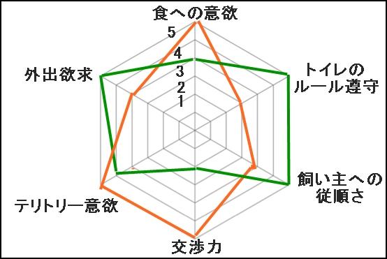 002aIMG_1091.jpg