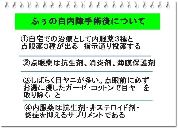 002aIMG_7832.jpg