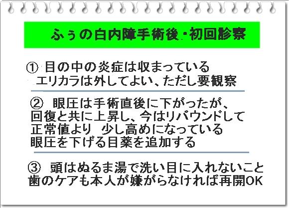 003aIMG_7869.jpg