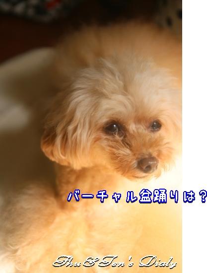 006aIMG_1130.jpg