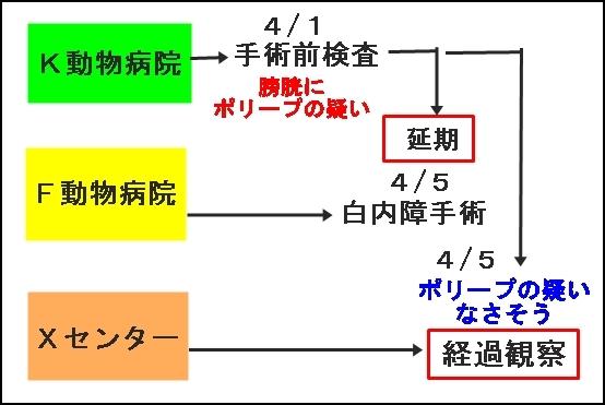 008aeroIMG_1092.jpg