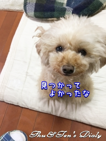 010aMG_5430.jpg