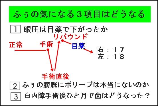 011aIMG_1092.jpg