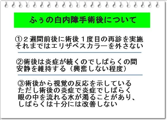 011aIMG_7832.jpg