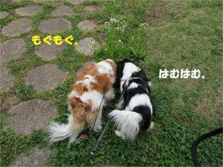 03_convert_20180416172750.jpg