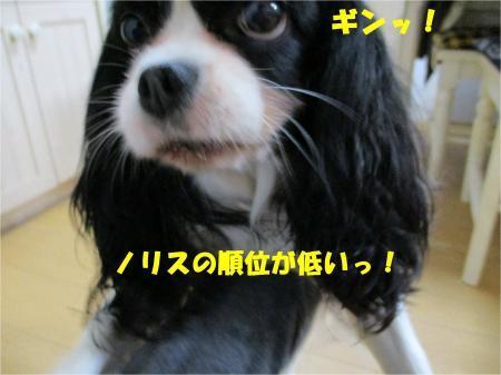 04_convert_20180516180750.jpg
