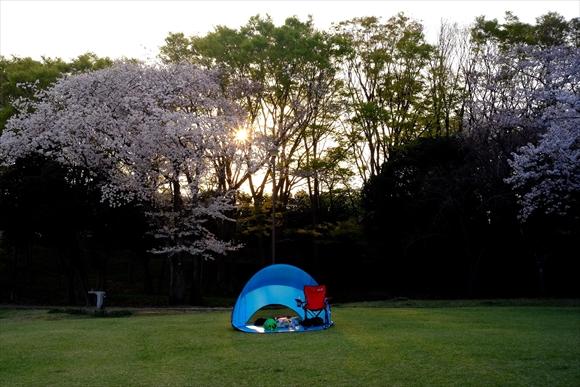 青いテント-1_R
