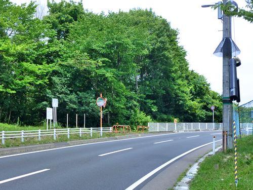 tazawa3.jpg