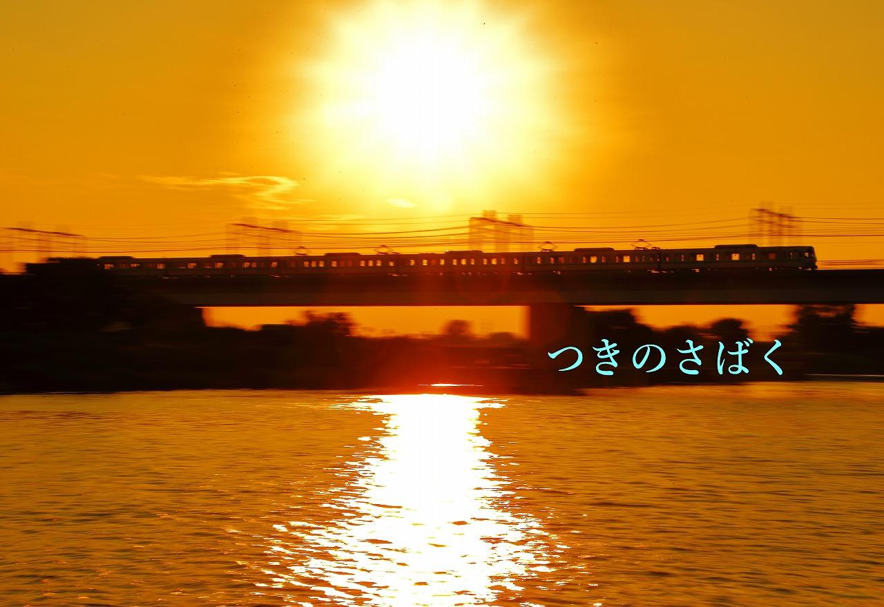 IMG_1471c8500_1.jpg