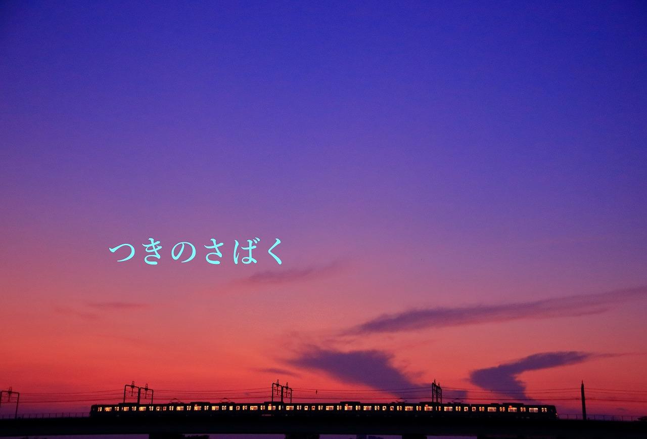 IMG_1824f7300_1.jpg