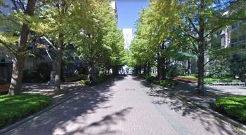 s-aoyama2.jpg