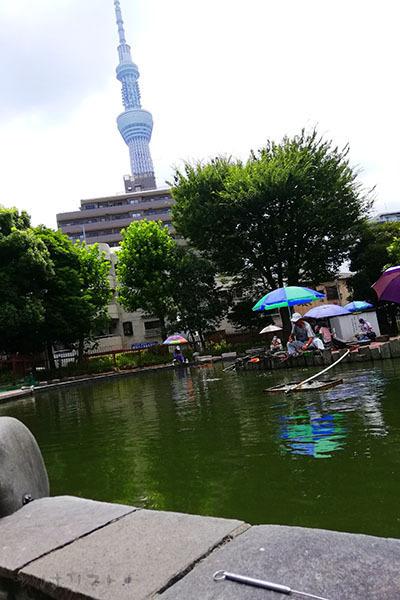 墨田公園042