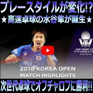 水谷隼VSオフチャロフ 韓国オープン2018