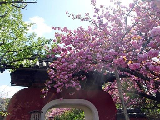 石峰寺-a DSC00390