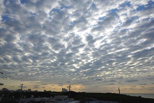 雲絨毯a4-26,7-27 DSC06590