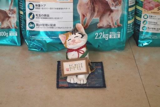 梅雨入り-c DSC01805