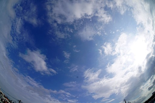 雨日c-6-01,8-54 DSC06713