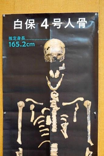旧石器人-f DSC01771