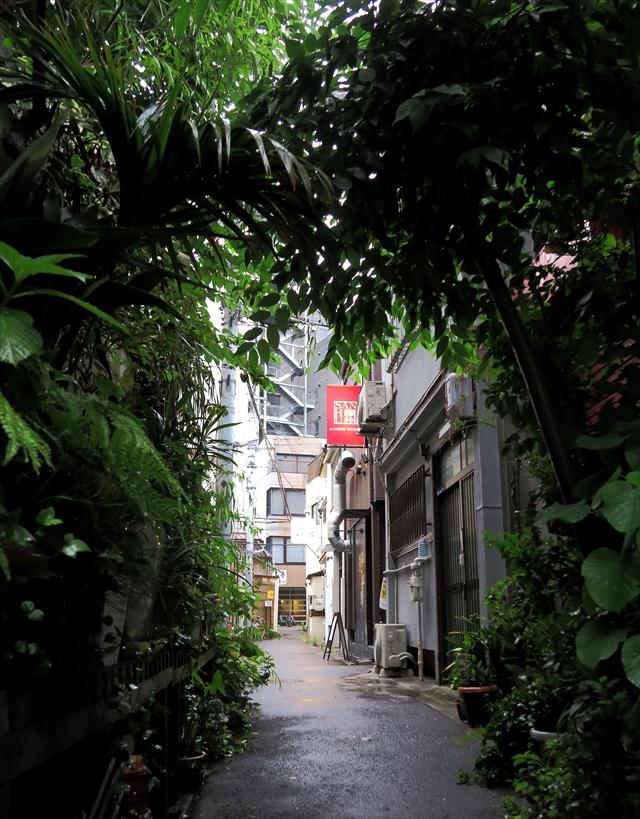 180706-情熱うどん讃州-006-S