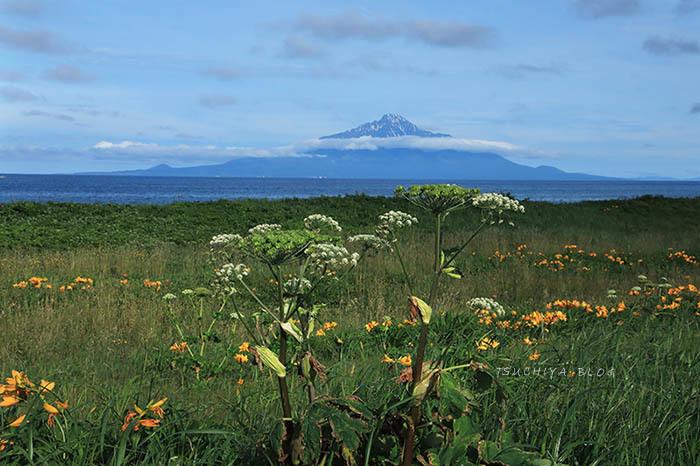 利尻島 2