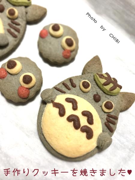 ttr_cookie03_moza.jpg