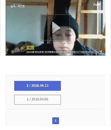 puffin_tvN