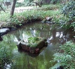 はけの森湧水